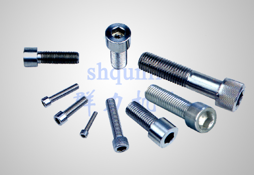 不锈钢内六角螺钉系列Stainless steel inner hexagon screw series