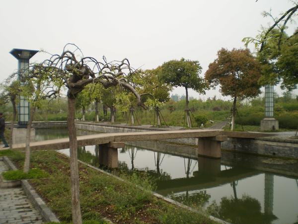 中草药科普植物园