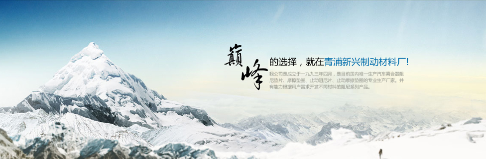 上海青浦新兴制动材料厂