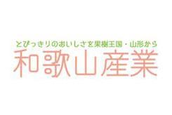 日本进口常温食品——和歌山产业