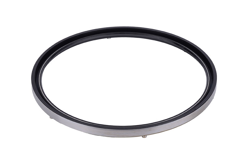 SBB skeleton oil seal