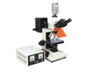 熒光顯微鏡 XSP-13C