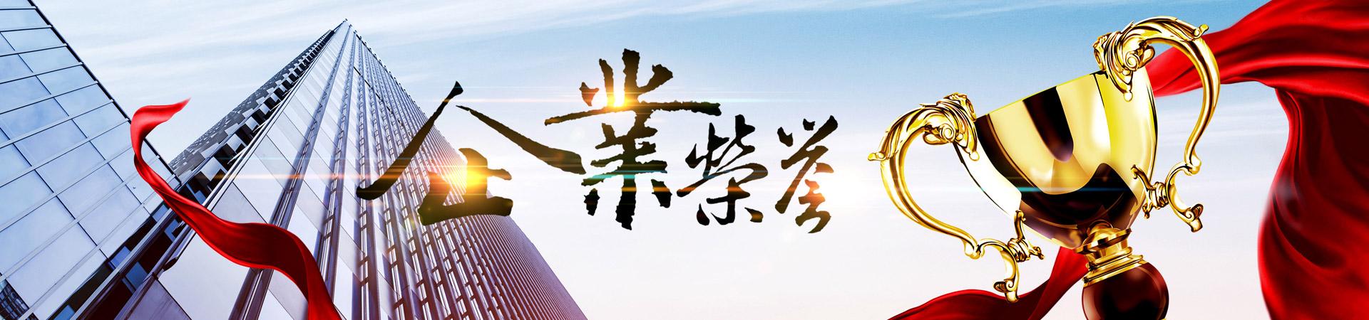上海明珠企業集團有限公司榮譽資質