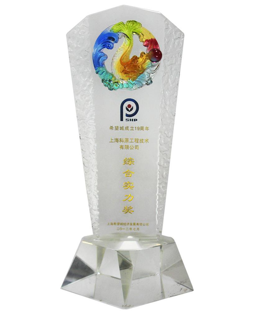 2012希望经济城综合实力奖