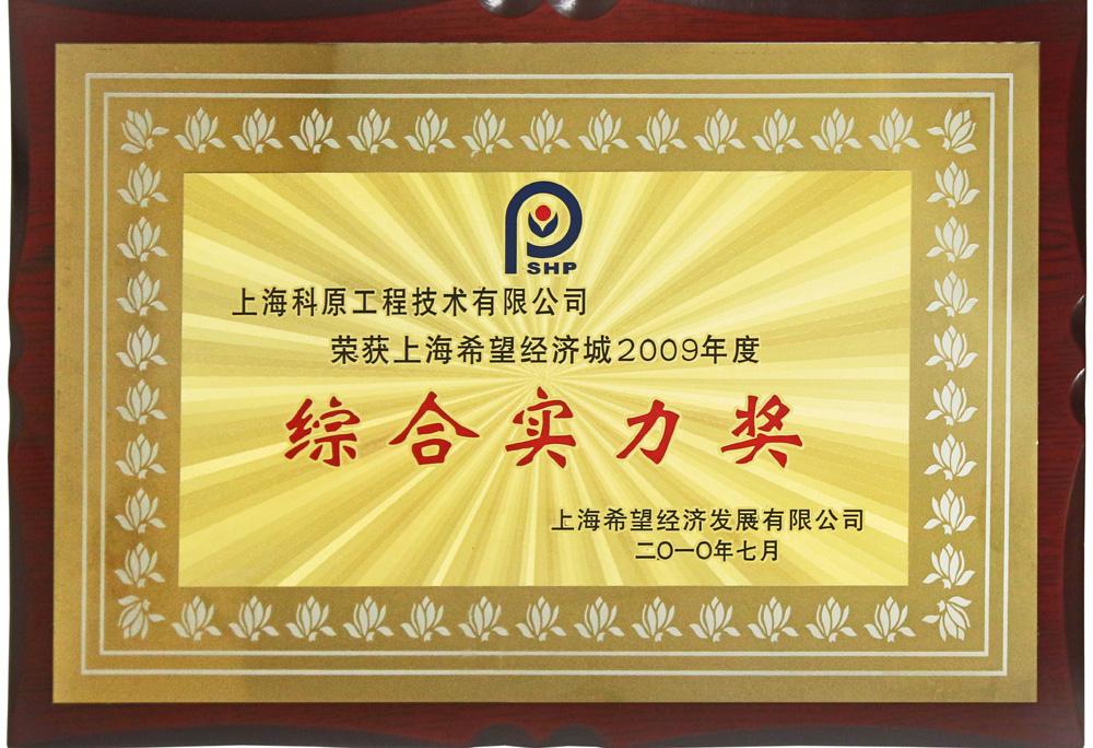 2009希望经济城综合实力奖