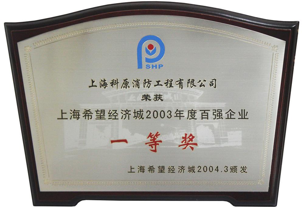 2003希望经济城年度百强企业一等奖