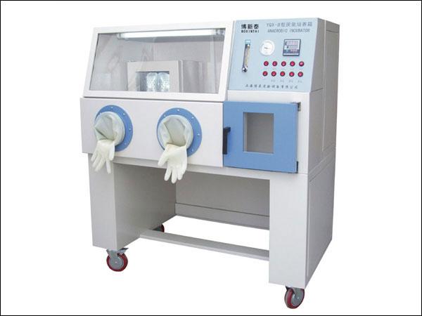 YQX厌氧培养箱