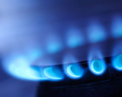 Gas appliance testing and thermal value analysis gases