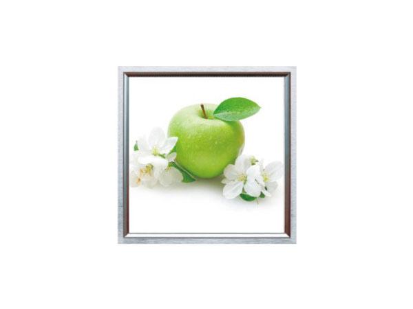 青苹果(8W)LED平板照明