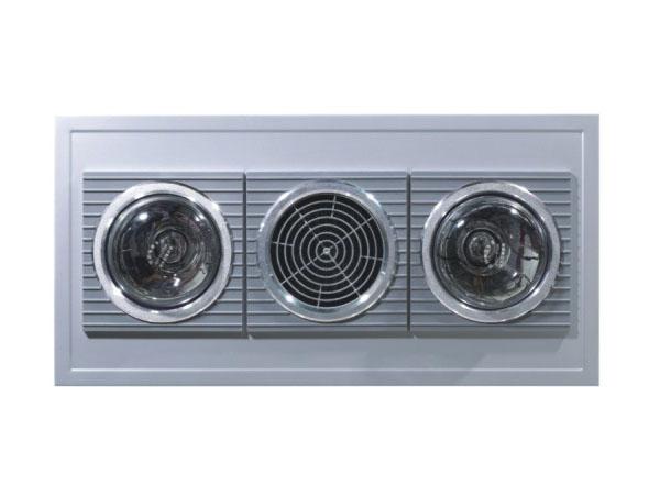 600DH-9(580W)二灯取暖+换气