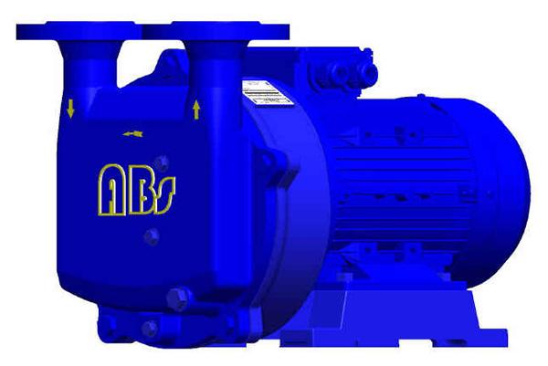 VE 系列 液环真空泵