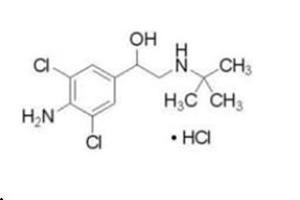 鹽酸克倫特羅(瘦肉精)(Clenbuterol)單克隆抗體