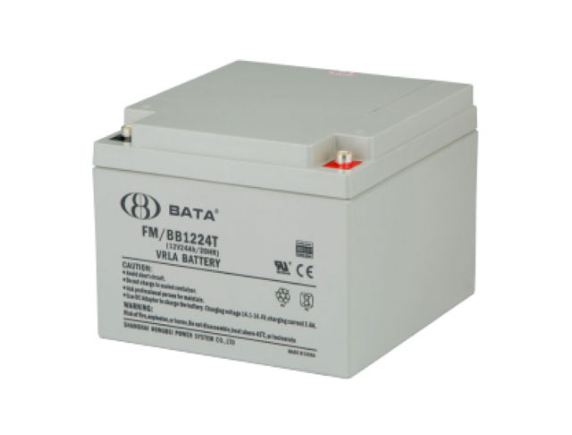 FM12-24铅酸电池