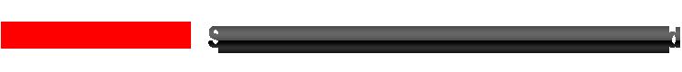 上海斯恳赫科技有限公司 ScanHome 二维码扫描枪生产 条码扫描模组 无线扫描枪生产 二维扫描平台 电子支付方案