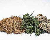 草本补充剂对人体健康弊大于利