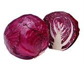 美国农业部研究者提醒:吃紫甘蓝苗,坏胆固醇低