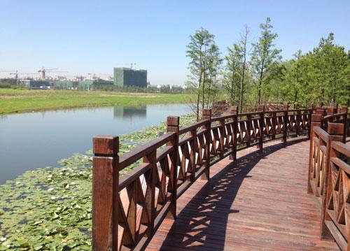 上海市北高新科技城水質改善工程
