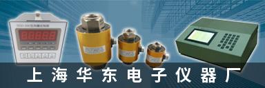 上海华东电子仪器厂